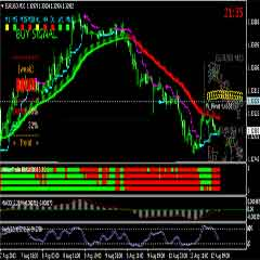 Learn Forex Currency Trading – How to Trade Forex Successfully Use Trend Following System and Strategy