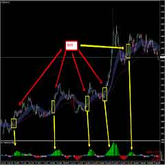 BEST Forex Trading Software – Forex Trading Systems and Forex Trading Robots that work!