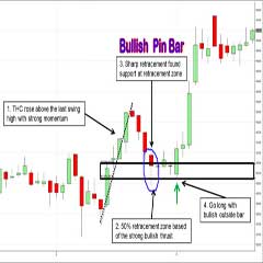 Forex Price Action Short Course :  50% Retracement Pin Bar Auto Zig-Zag Fibonacci Price Action Trading System and Strategy