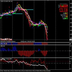 Forex Multiple Momentum Trend Following Trading System Based Heiken Ashi, Momentum, and SS2009 indicators