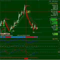 How to Analyse Forex Market Charts with EMA21 Trend Channel Daily Trading System